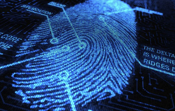 background checks, criminal record check service application fingerprints
